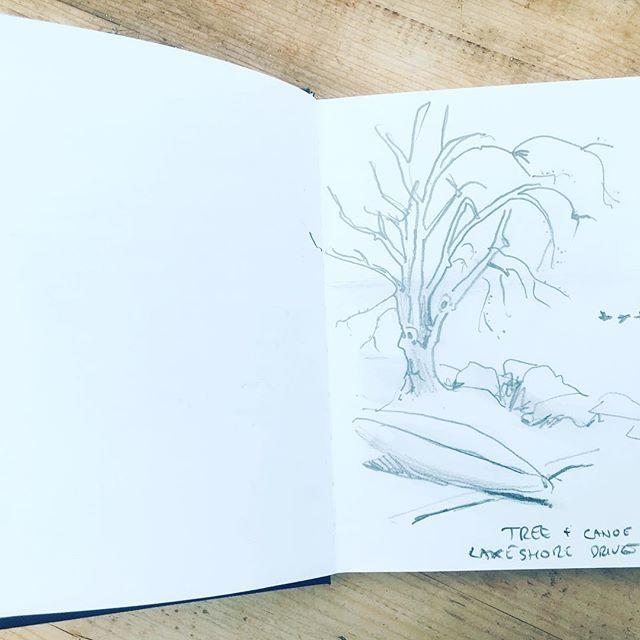 More sketching.... #lakeontario #sketch #art #tree