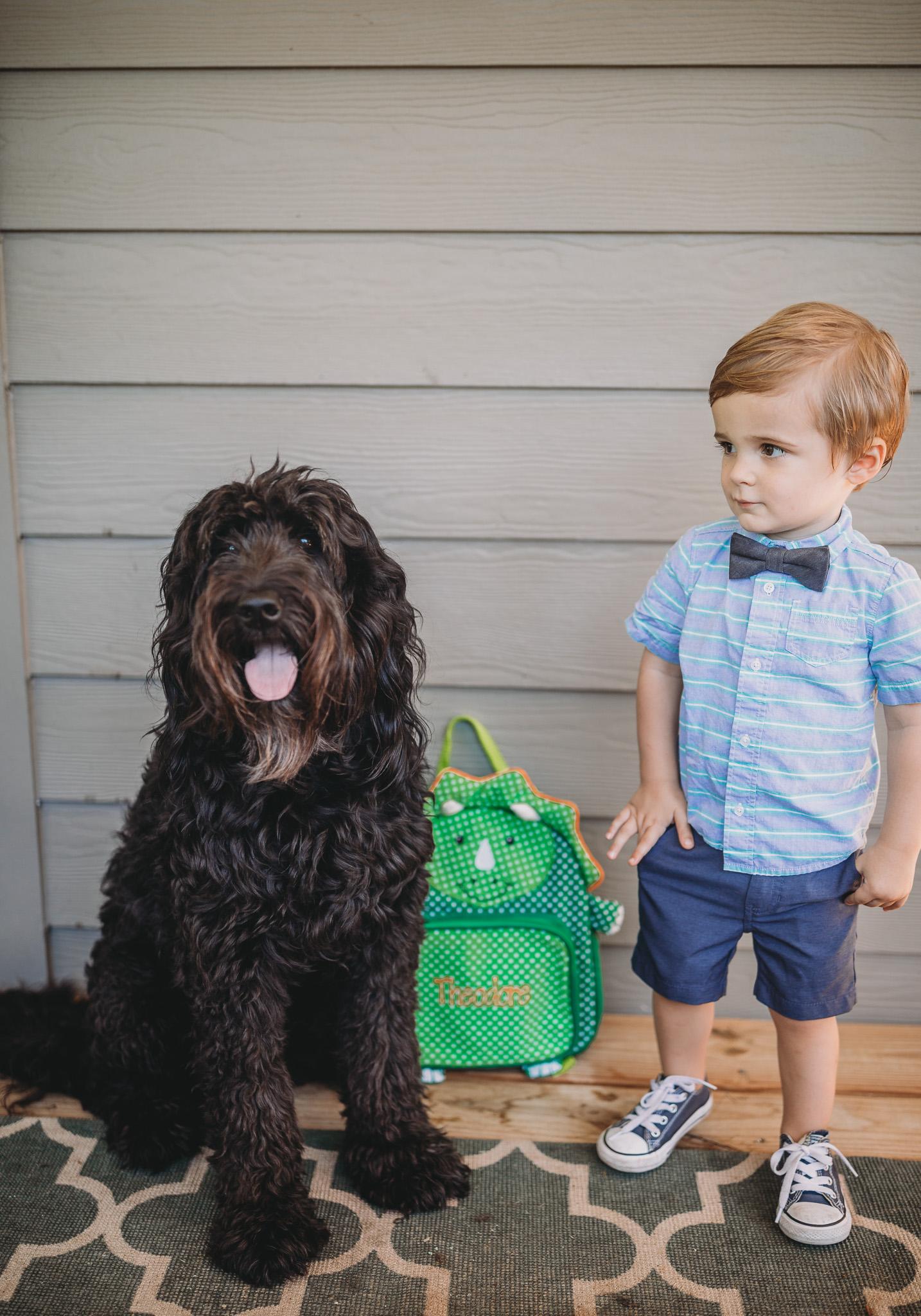 toddler and golden doodle dog
