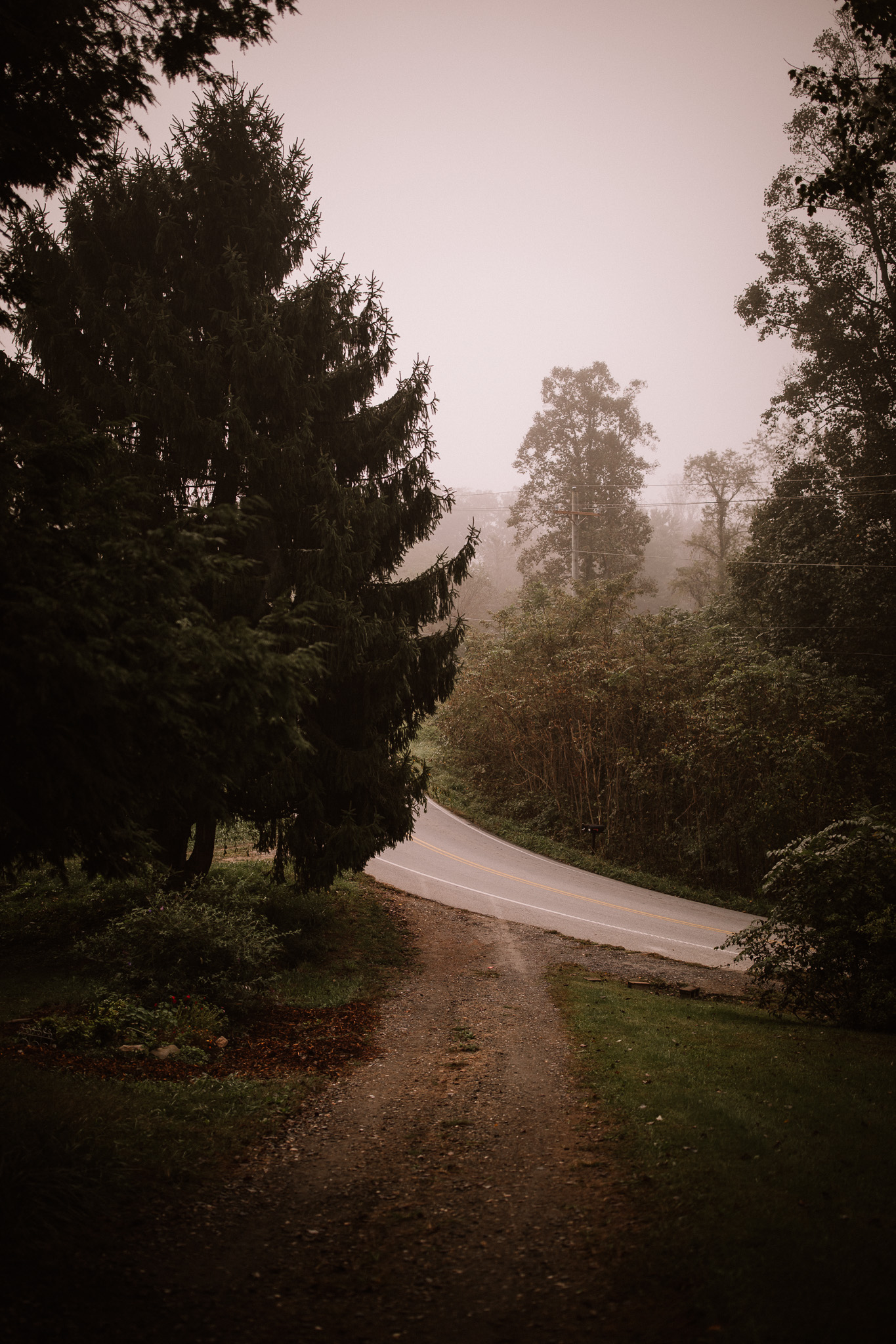 the fog in the mountains of nc