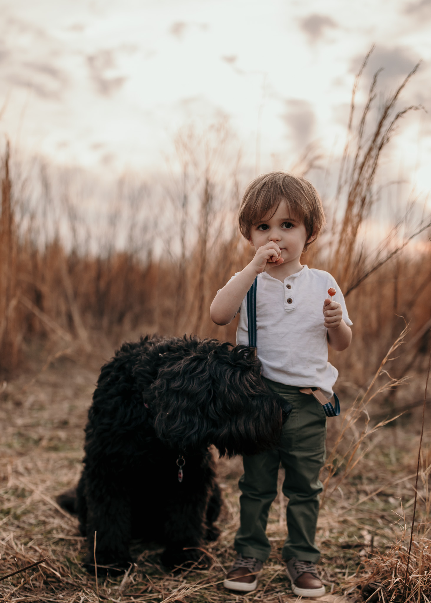 Little Boy and His Dog Playing