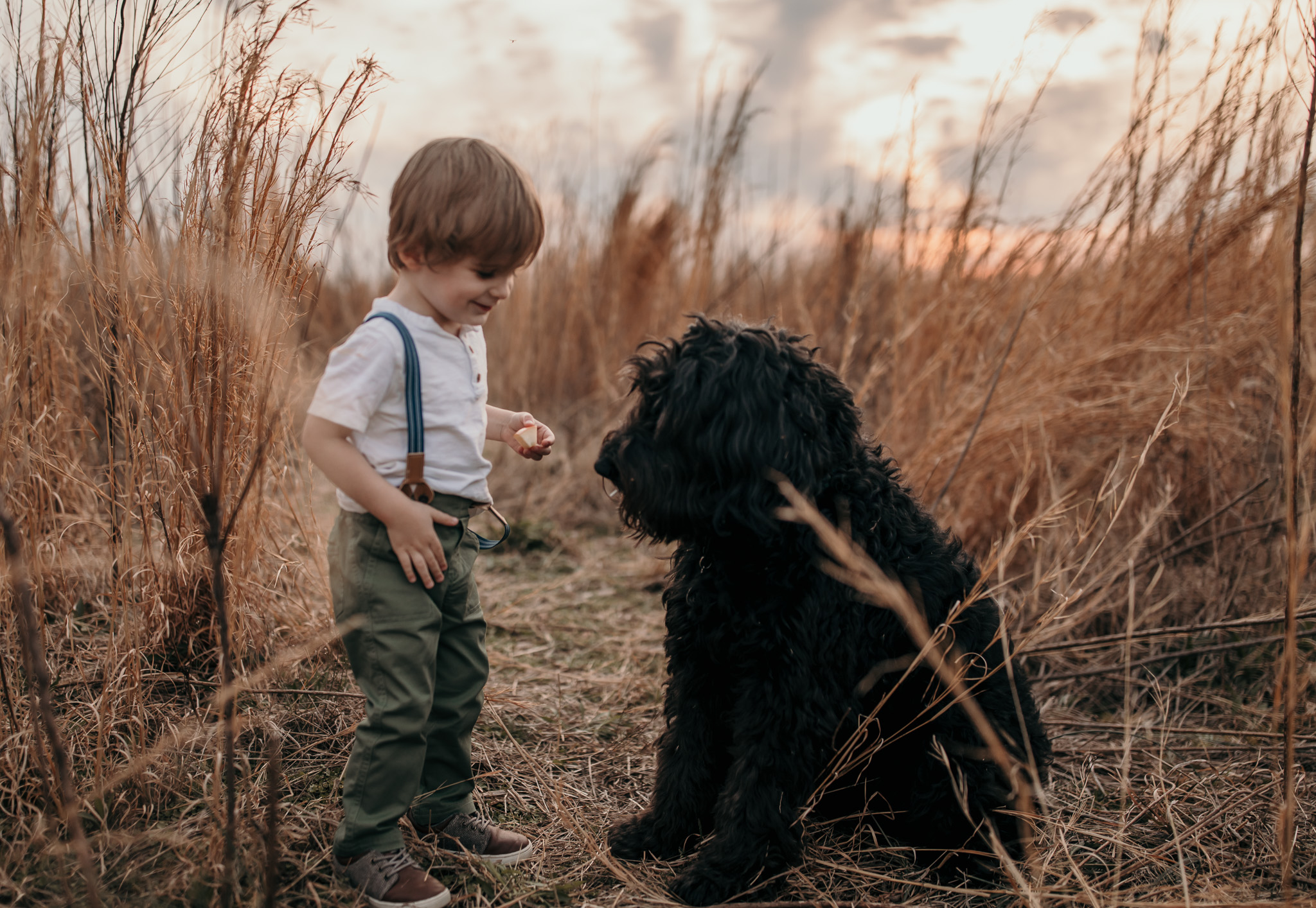 A Young Boy and his Dog