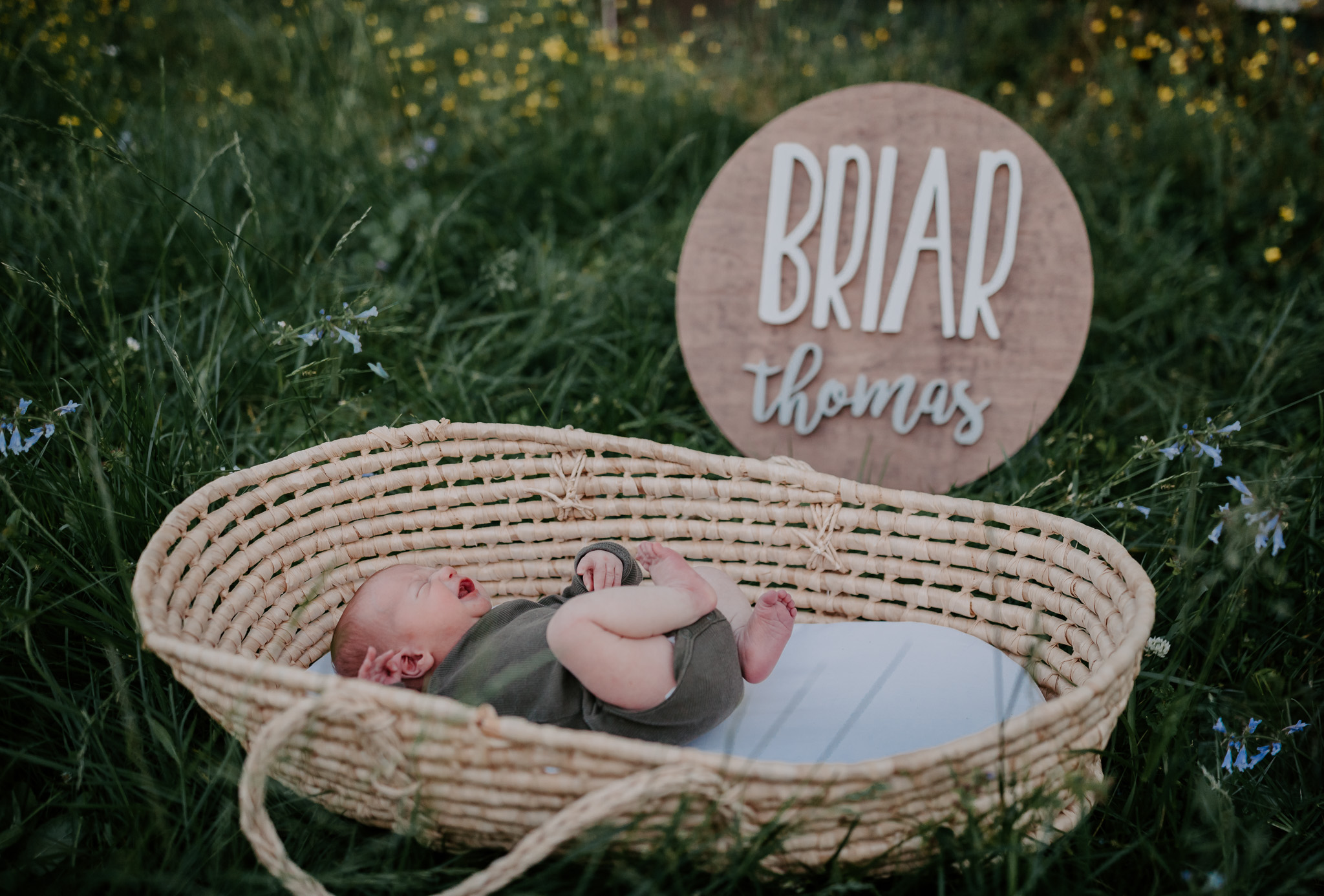 baby in basket outdoors