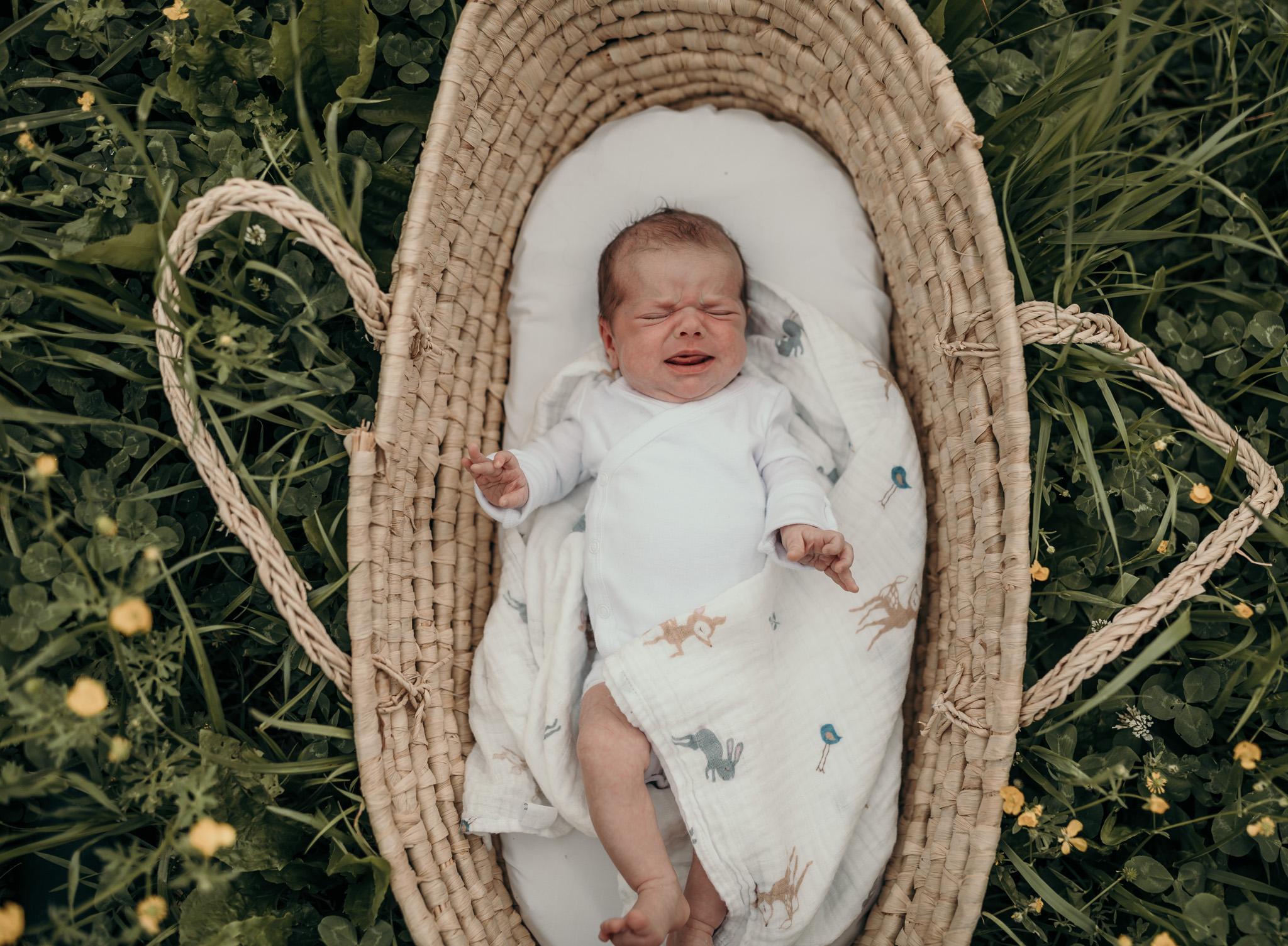 newborn in a basket outside