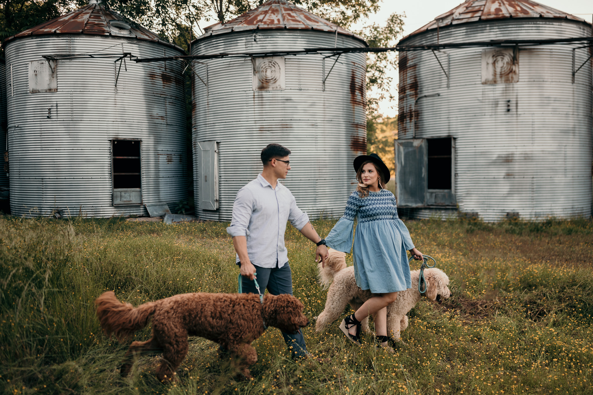 couple with two golden doodles in maternity photos