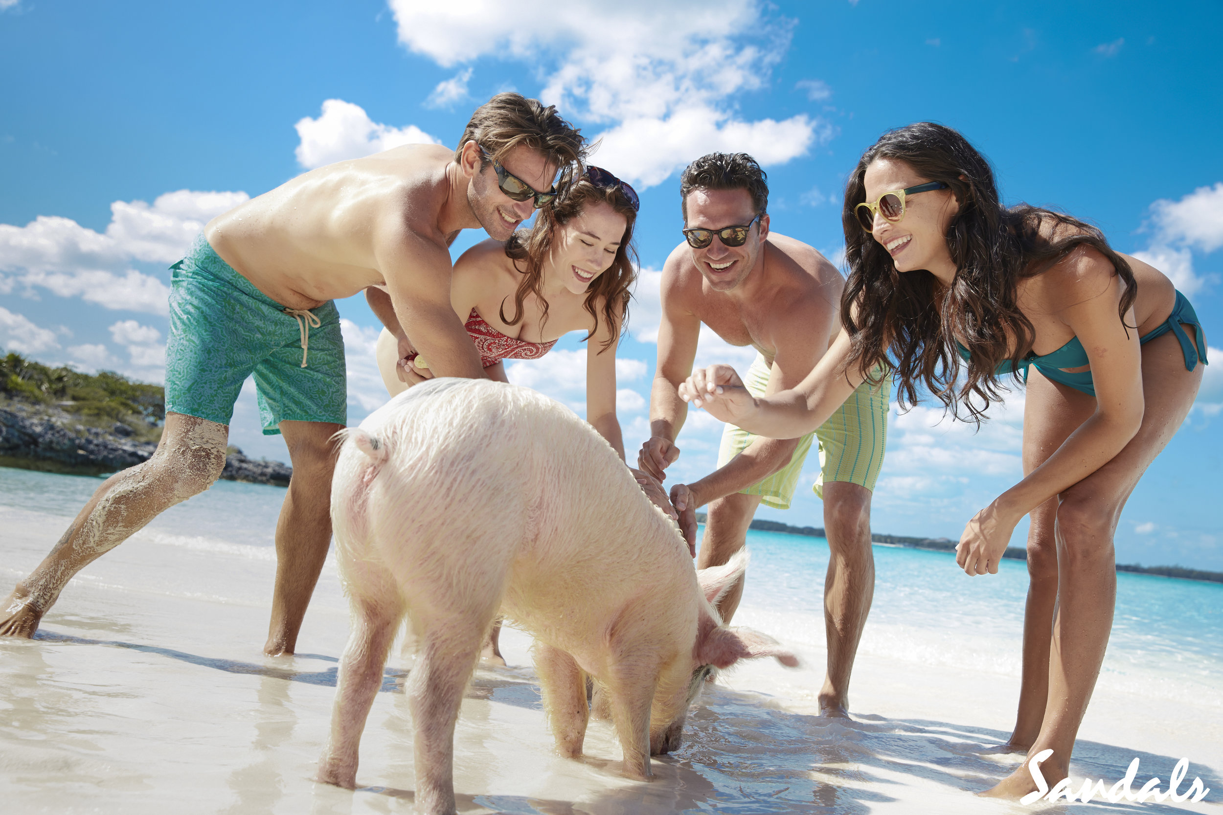 Don't just sit in your room…. - Get out and swim with the pigs, get on an ATV, do a little exploring!