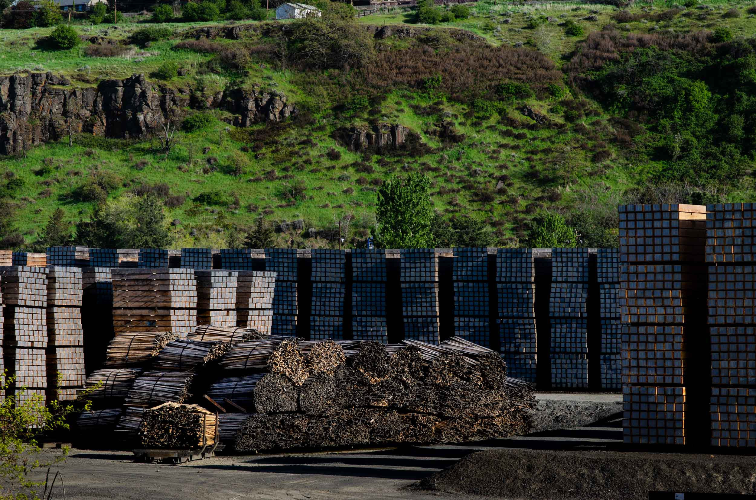 Railroad ties are stored in the yard at AmeriTies West, LLC in The Dalles, Ore. AmeriTies processes approximately 1.2 million ties annually, using 3 to 4 million lbs of creosote to preserve the wood.
