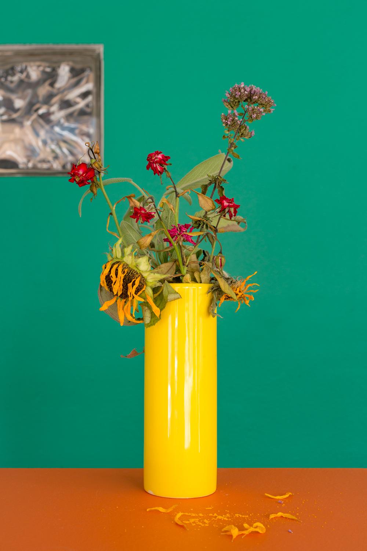 dream_garden_dyingflowers.jpg