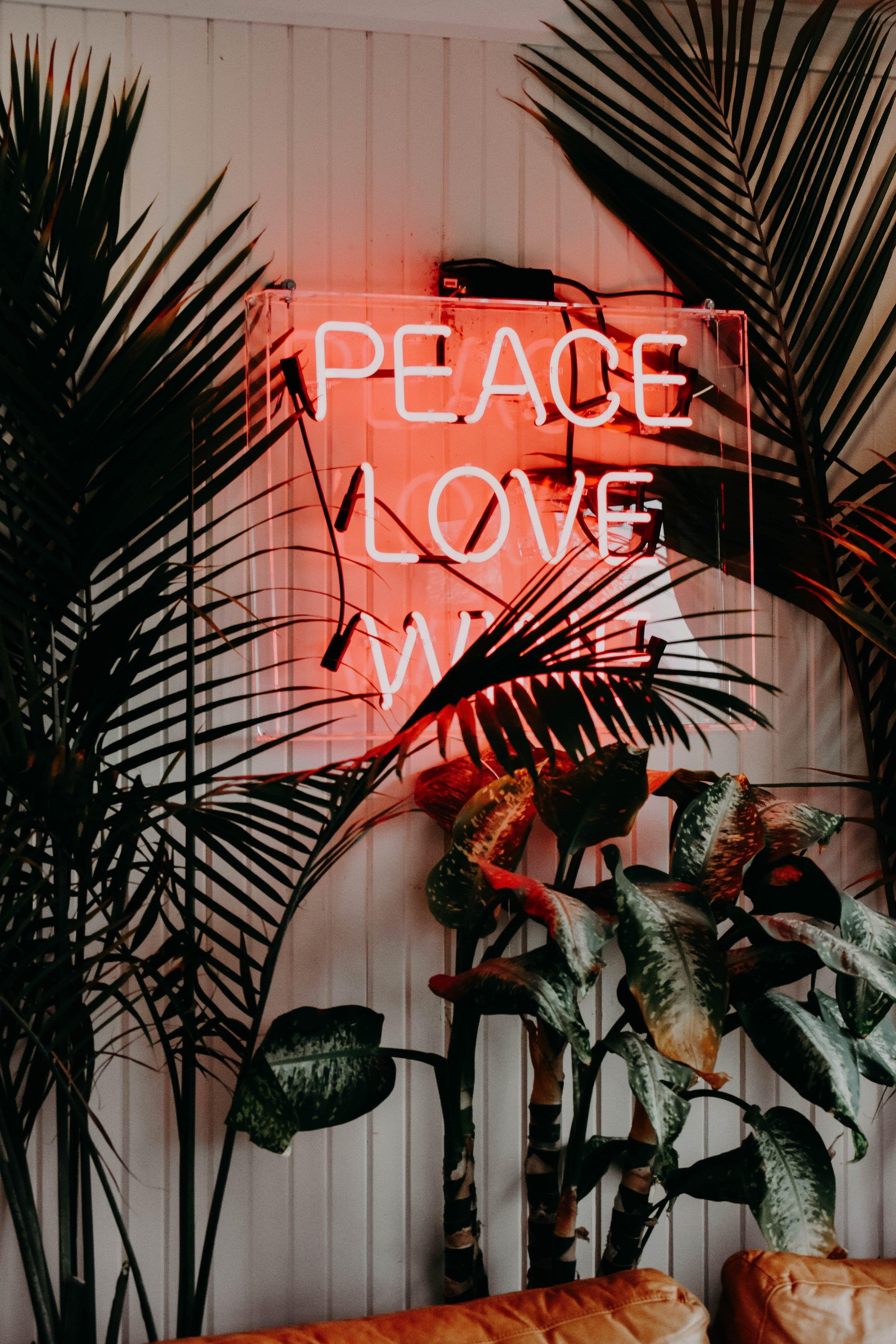Foto de  Jacalyn Beales  en  Unsplash