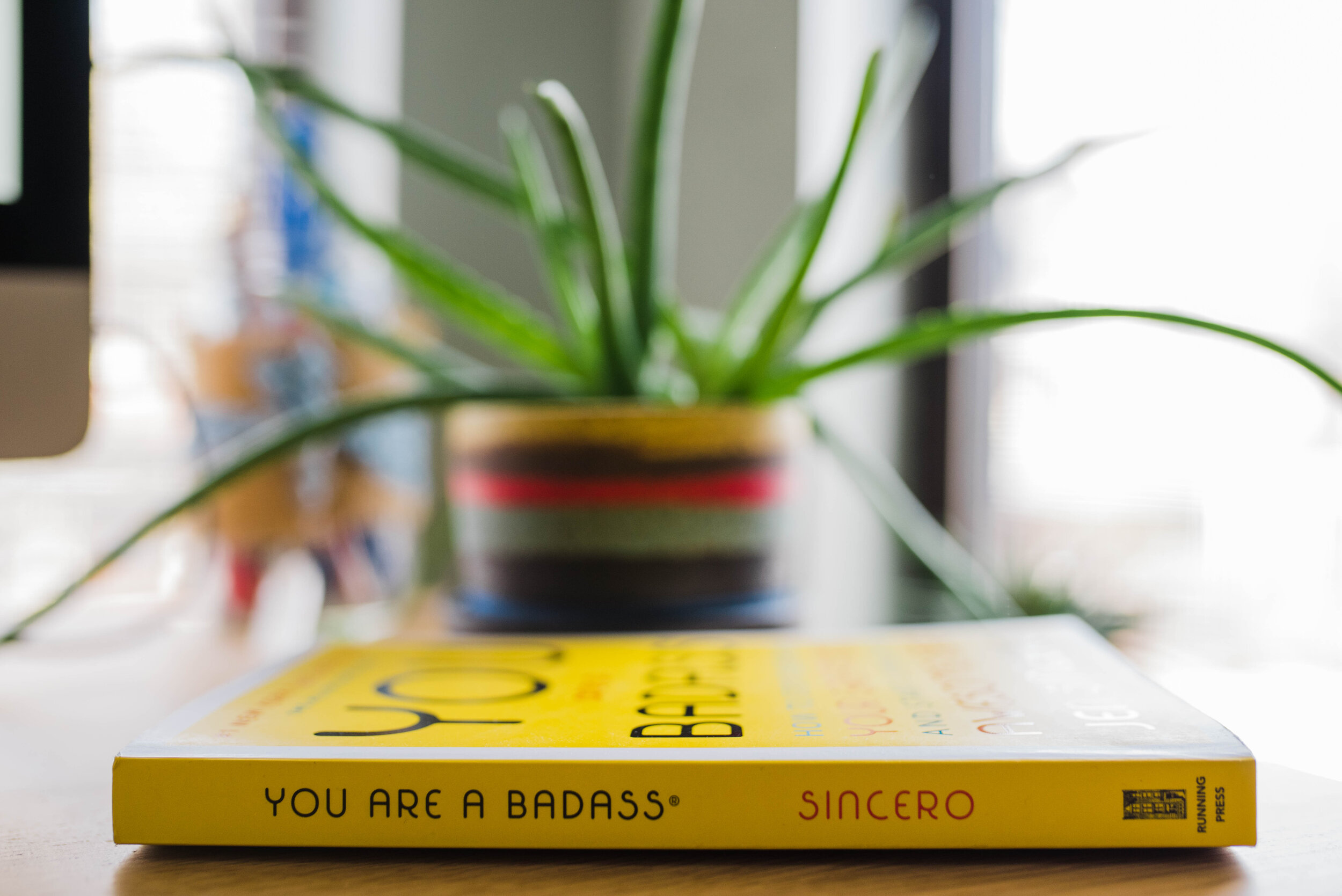 You-are-a-badass-book