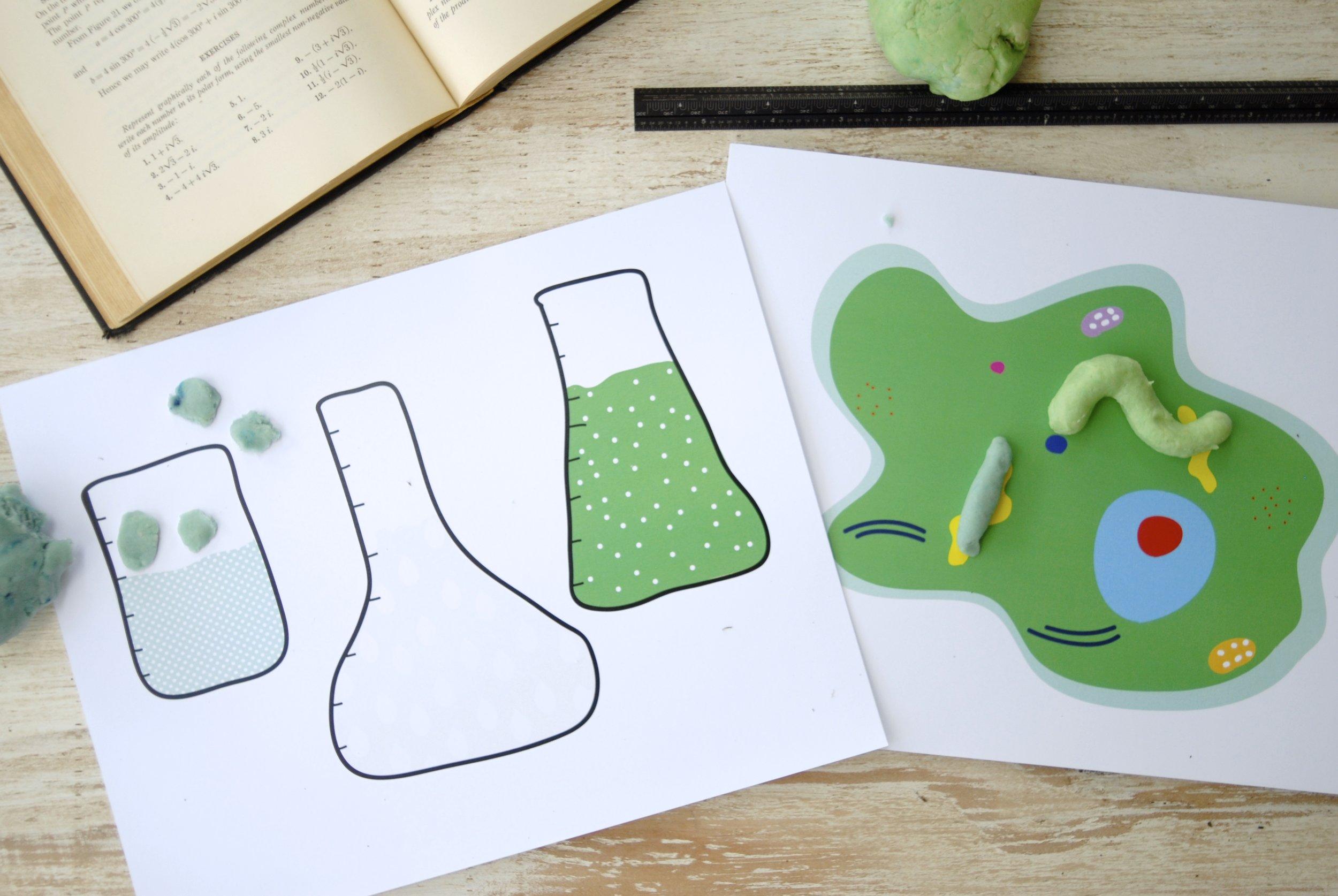 beaker and cell craft mat