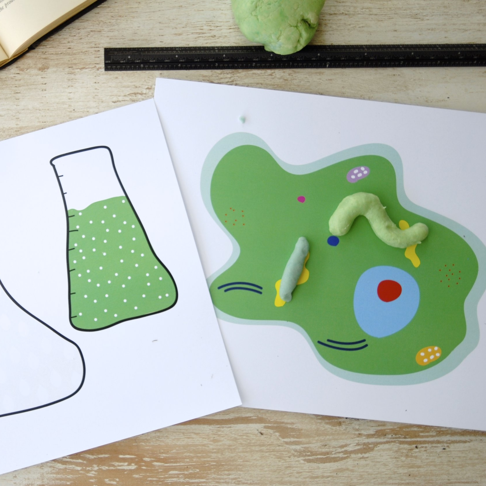 bEAKER AND cELL pRINTABLE - Play dough and craft mats