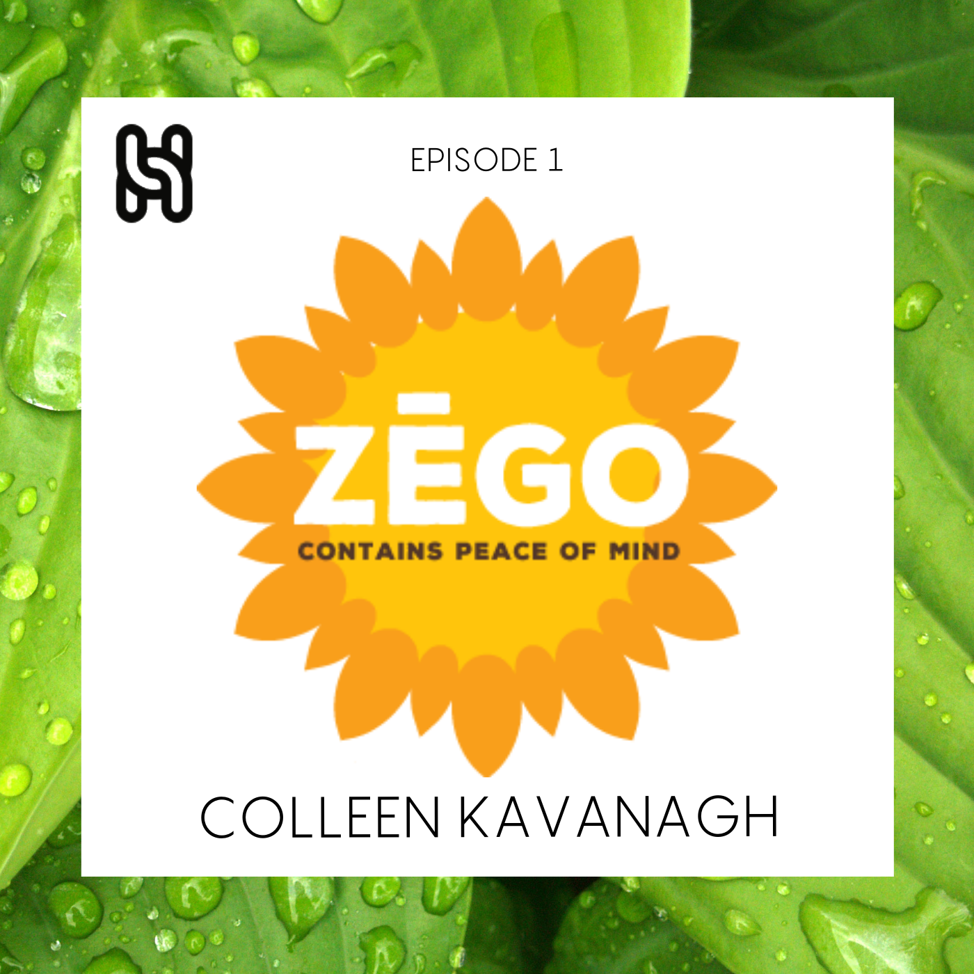 ZEGO Foods  Podcast Cover Ep 1.png