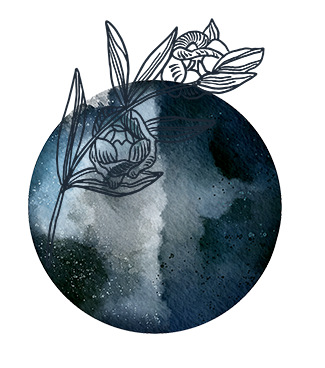 moon and flower.png