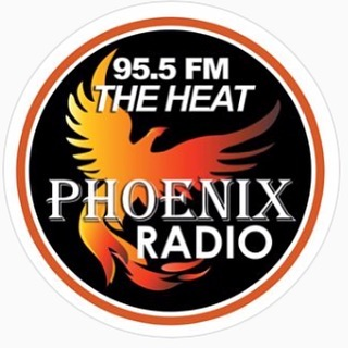 I'll be interviewed live tonight at 5pm  here: @955theheat  Tune in to hear me talking about plants and people and community in our beloved city of Utica! . . . #uticany #herbalism #plantmedicine #community #phoenixradio #therootcircle