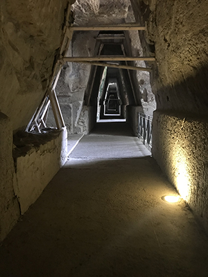 "The hallway that seekers would walk to get to the Sibyl's cave. It is thought that this walk was part of the process of entering the ""womb"" or ""source"" of knowledge."