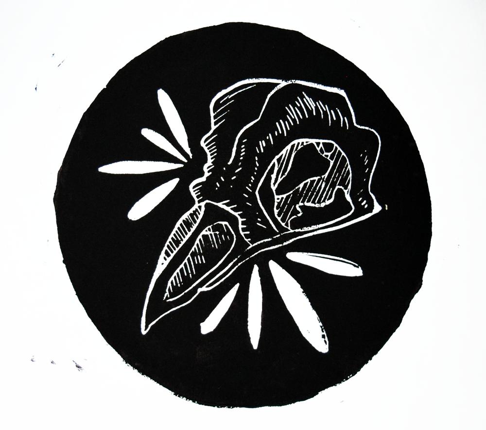 birdskull-website.png