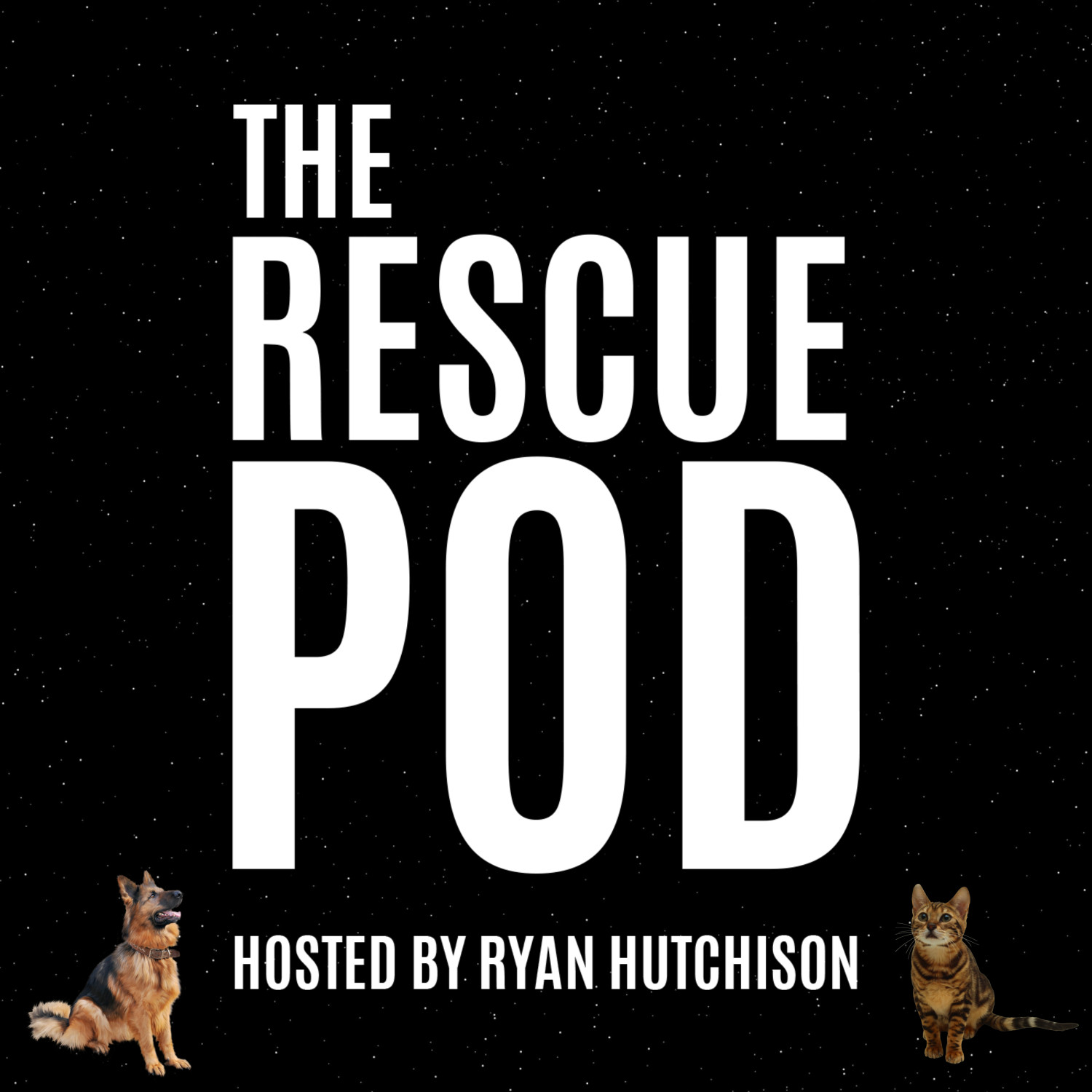 """Where animal rescue is always part of the conversation."" - 'The Rescue Pod' is a podcast where we discuss animal adoption, animal fostering, volunteering at animal rescue organisations and also responsible ownership.You can listen to the podcast by clicking here or by searching 'The Rescue Pod' on Apple Podcasts, Google Podcasts or Spotify.We hope that you get some value from the podcast and always appreciate constructive criticism!"