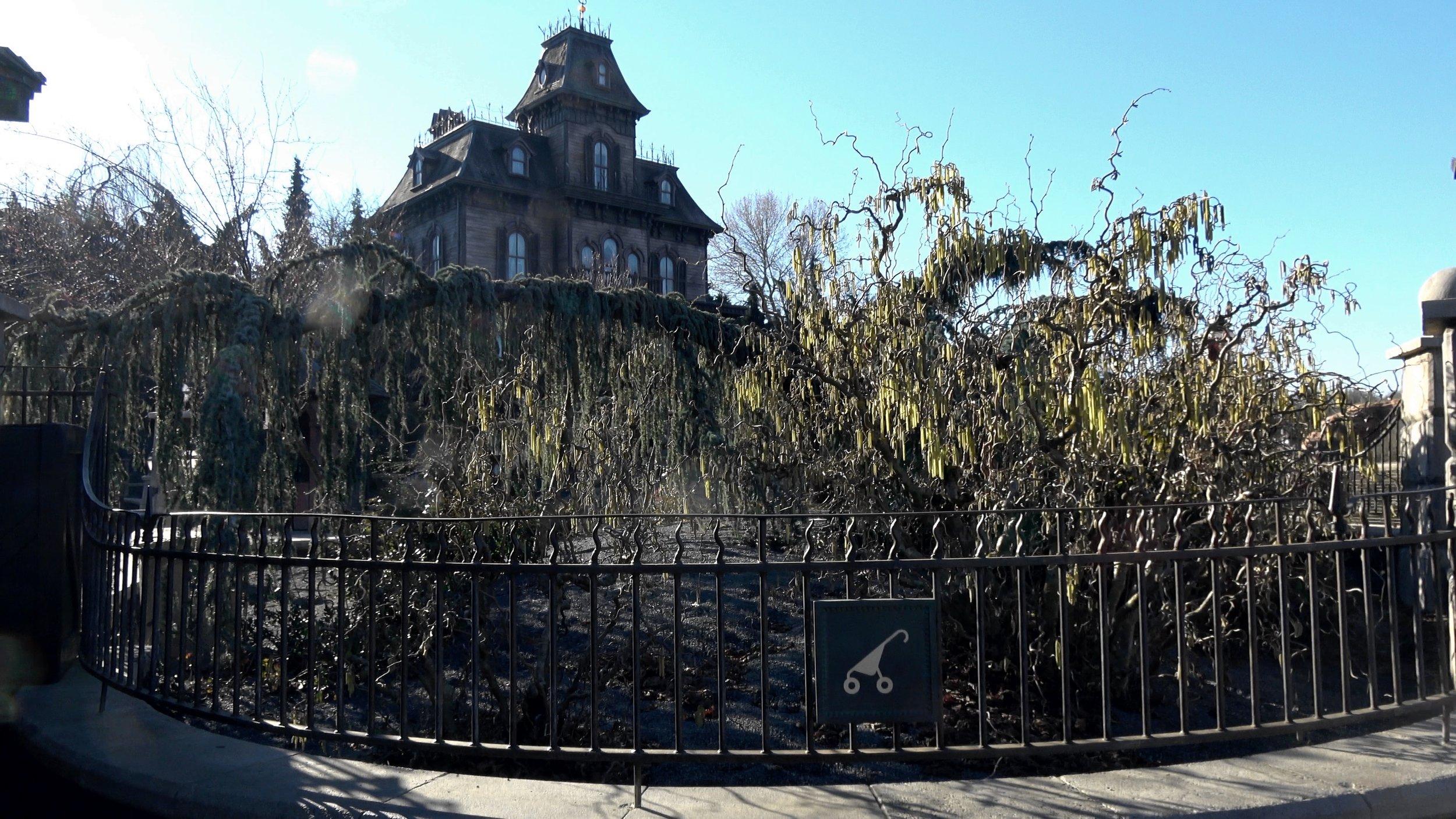 Who you gonna call when Phantom Manor is closed at Disneyland Paris.jpg
