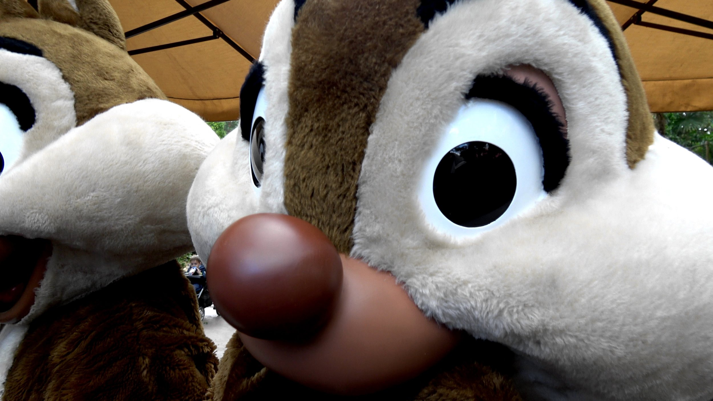 Chip and Dale Meet and Greet at Disneyland Paris.jpg