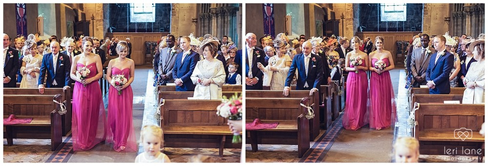 maesmawr-wedding-april-pink-bride-welsh-leri-lane-photography-15-1000x340.jpg