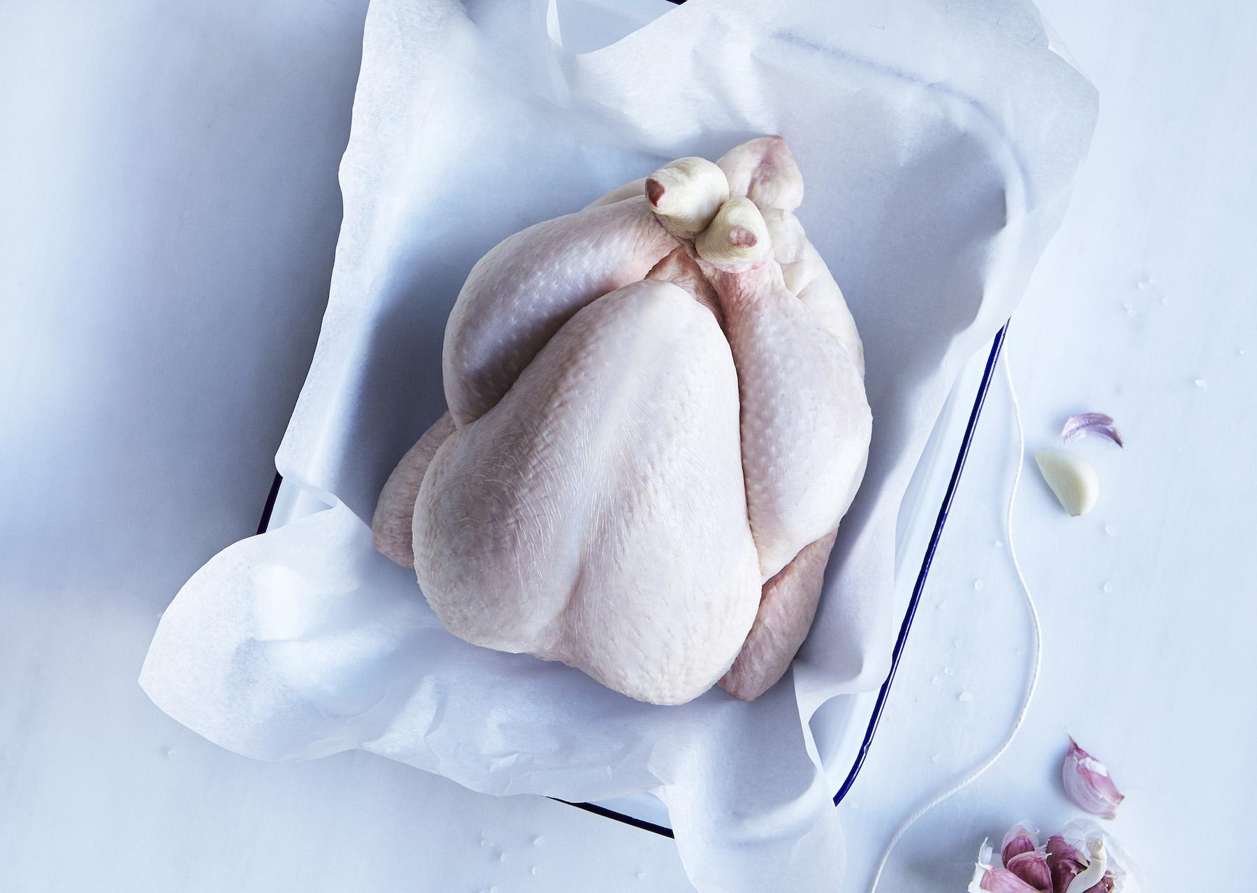 02-icon-artist-management-katie-hammond-angus_butchers_chicken.jpg
