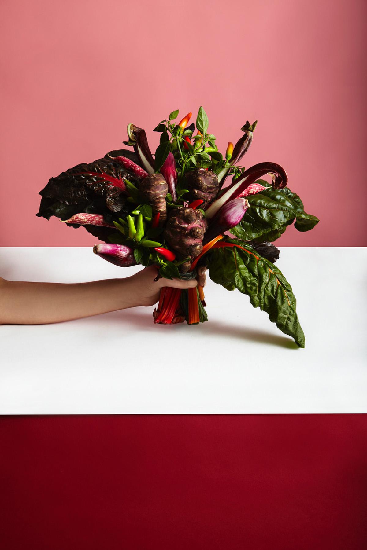10-icon-artist-management-katie-hammond-food-wild_and_red_222_ret_flat.jpg