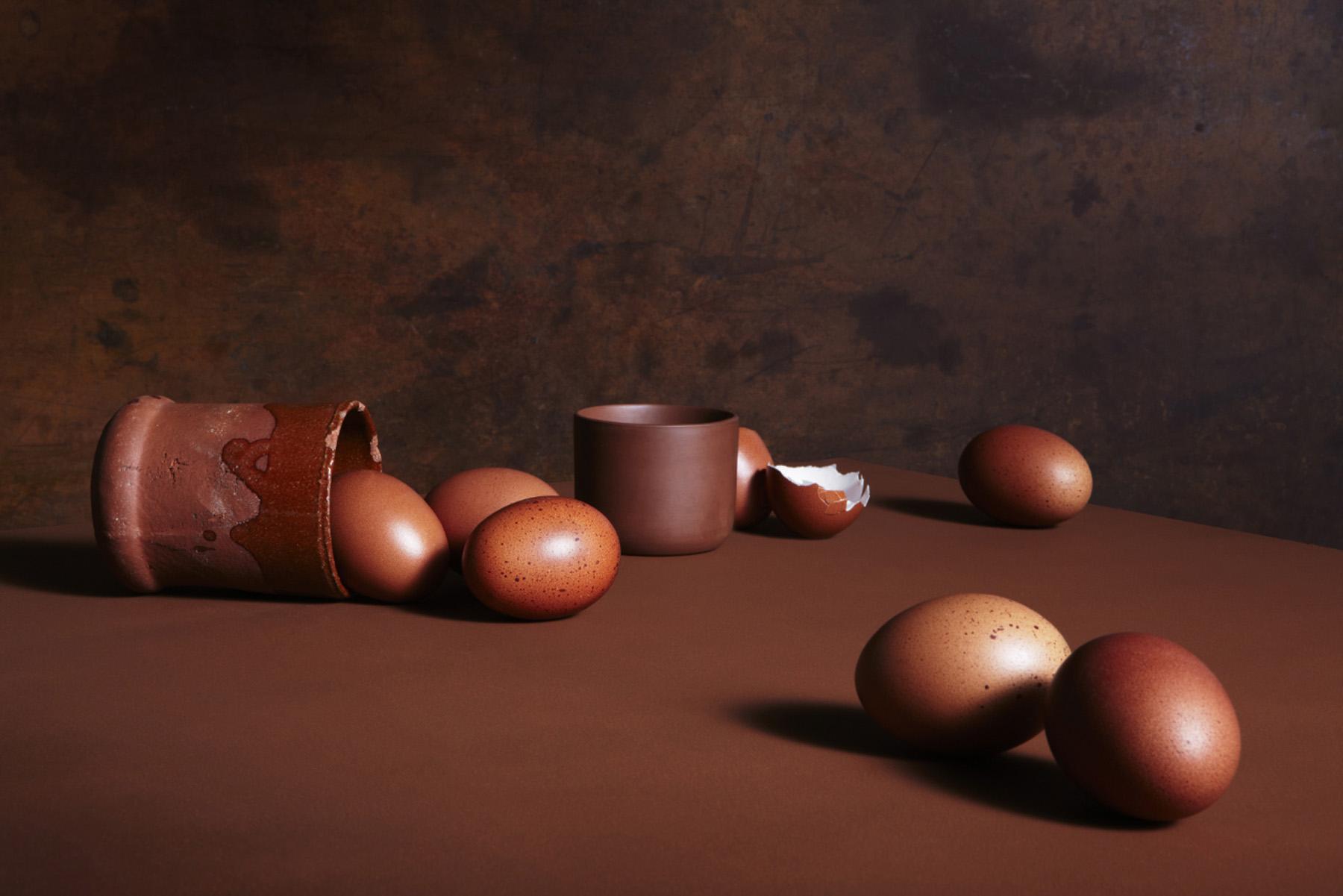 15-icon-artist-management-katie-hammond-food-icon-artist-management-katie-hammond-food-brown_exploration_of_eggs_ret_web.jpg
