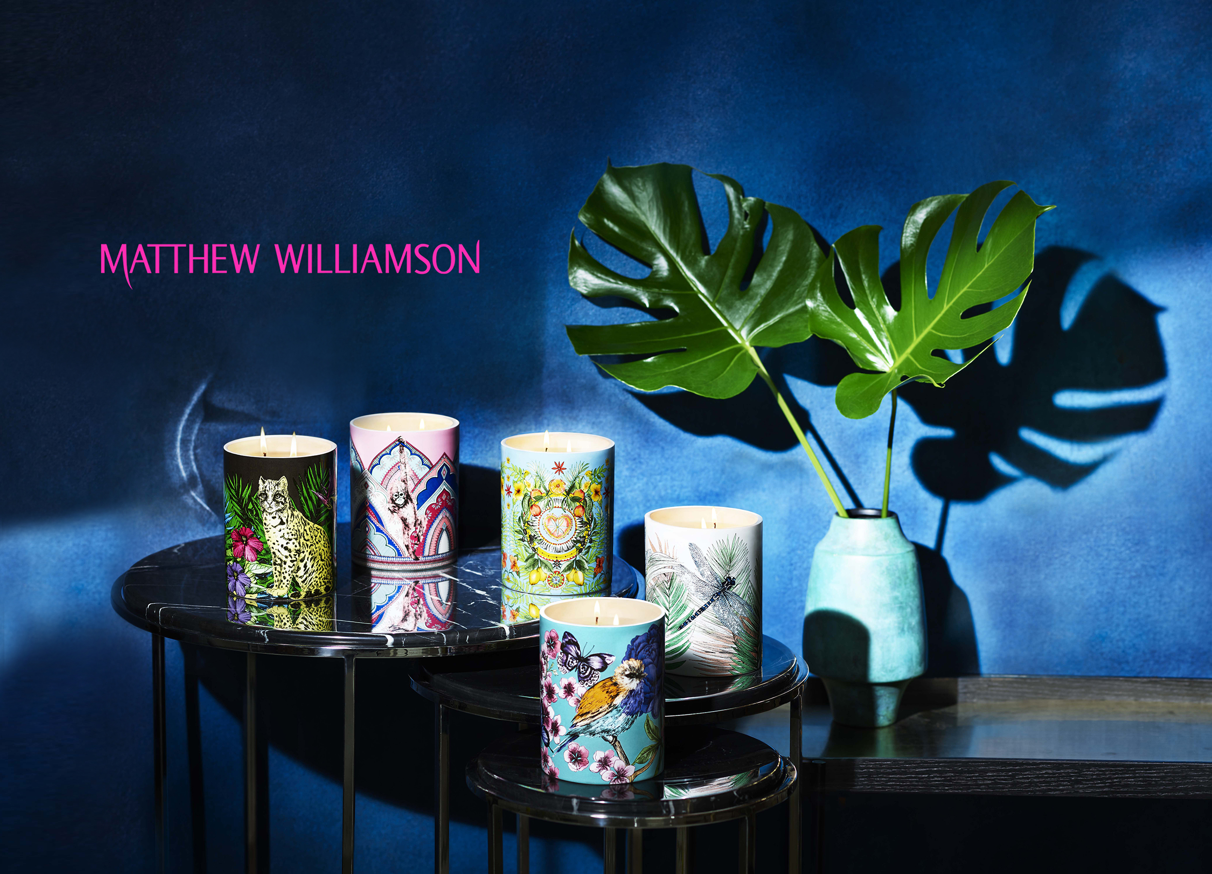 icon-artist-management-katie-hammond-advertising-matthew-williamson-001.jpg