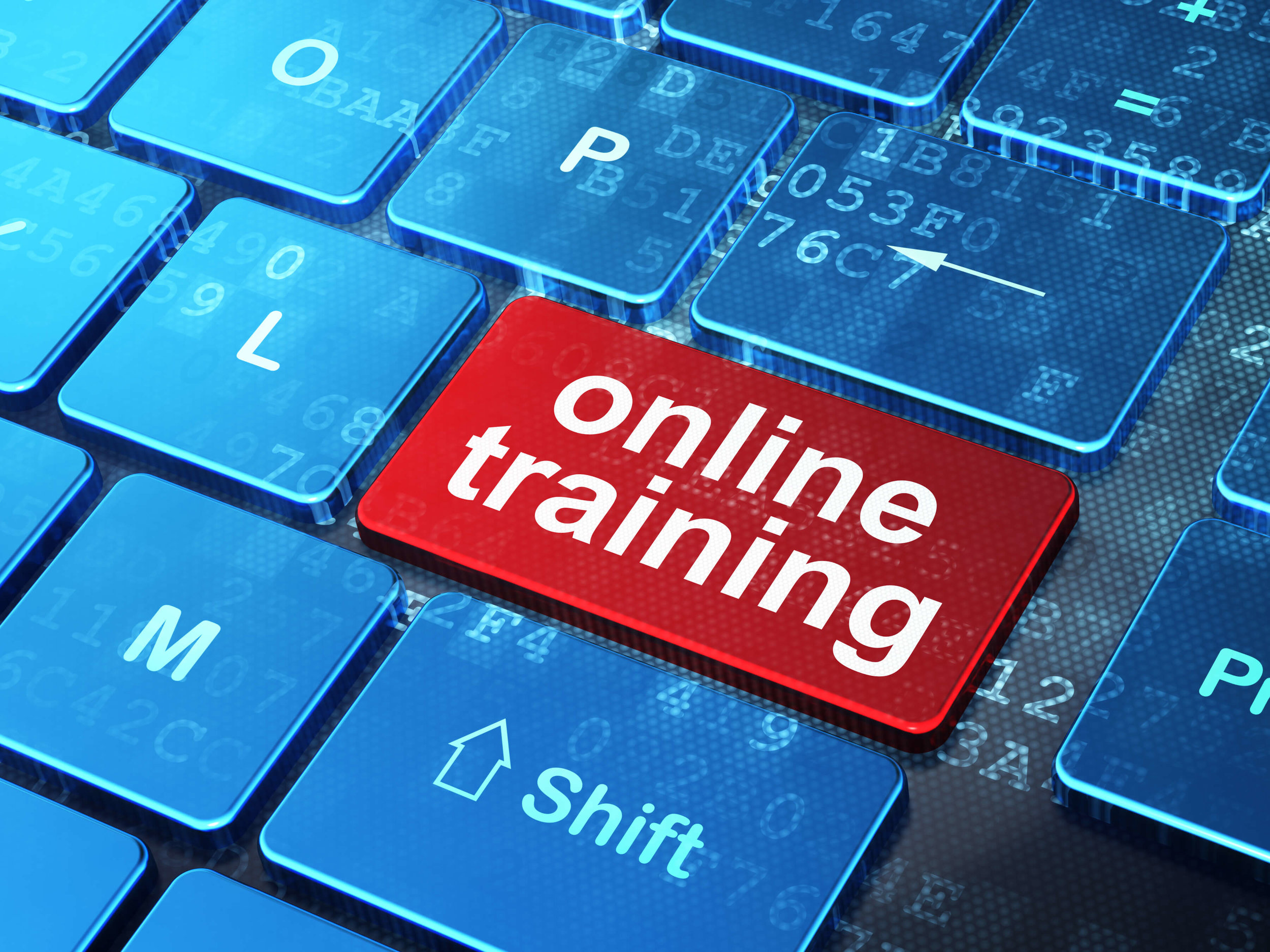 Online-Cyber-Security-Training.jpg