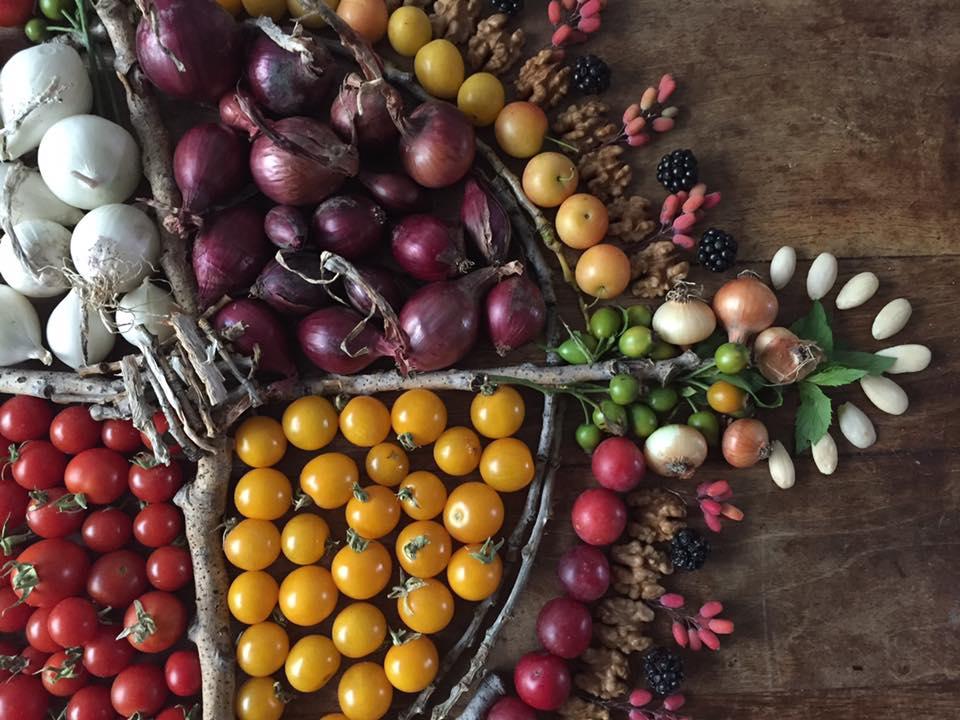 Мандала от плодове и зеленчуци, Весела Петрова