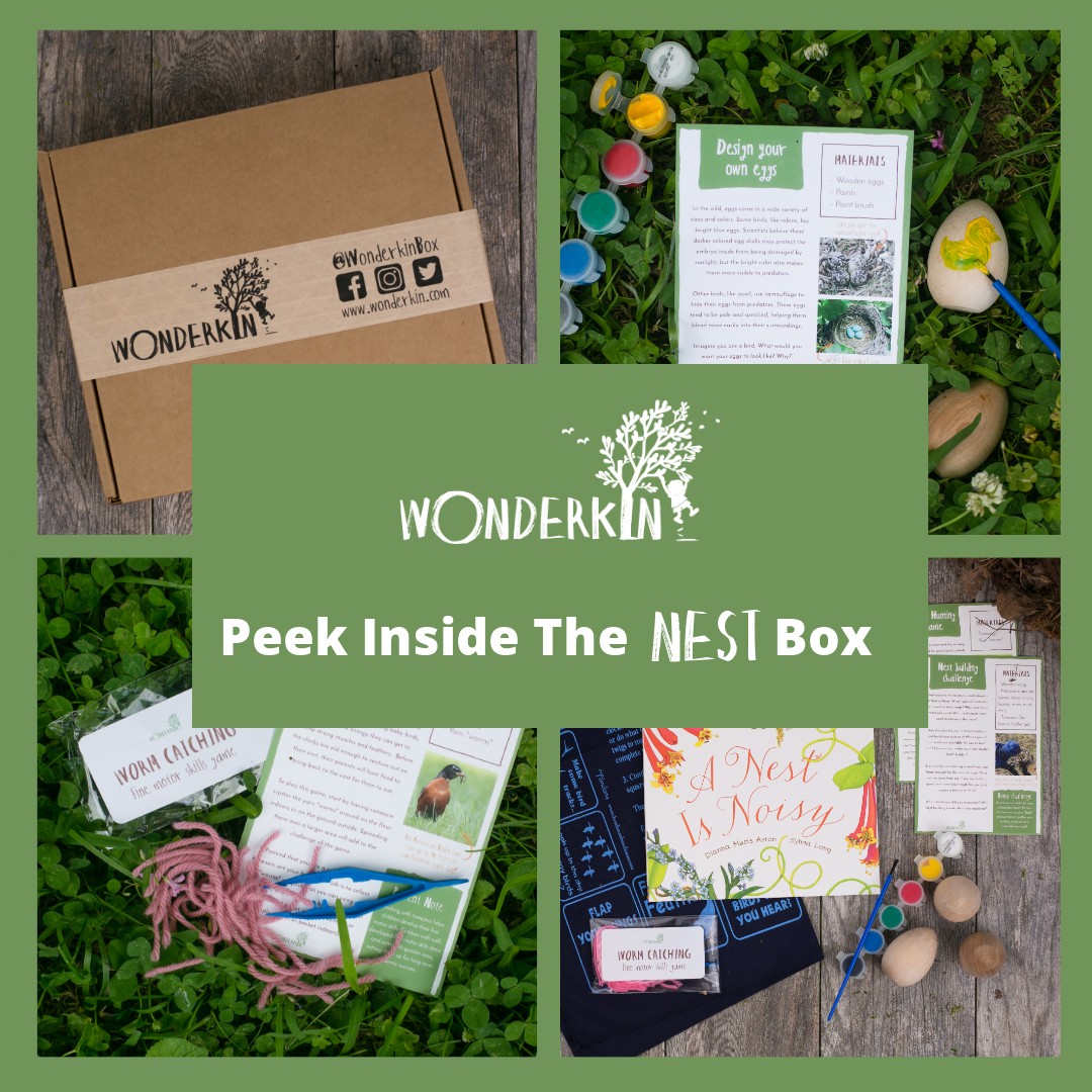 Peek Inside the Wonderkin Nest Box -- Our educational subscription boxes are designed to support early childhood development by getting kids outdoors and connected to nature.