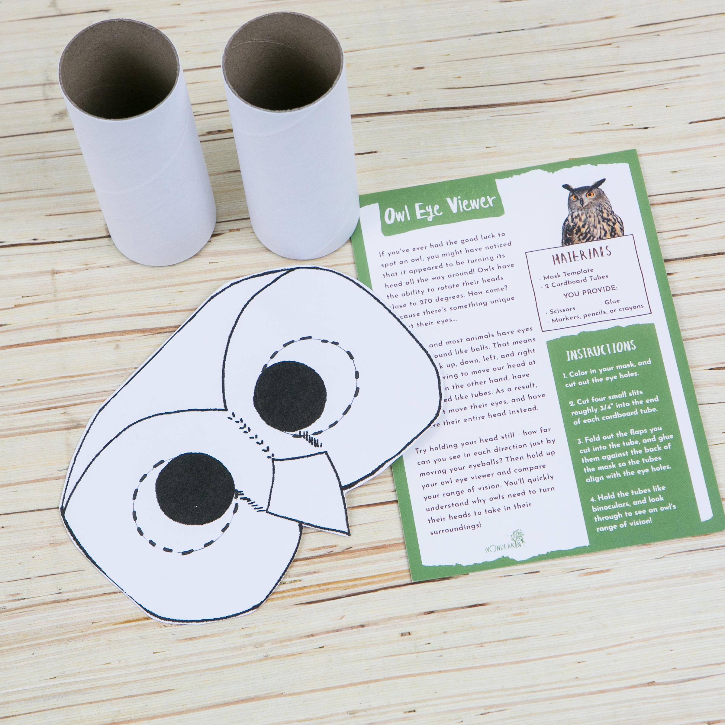 Owl Eye Viewer Kit from the Wonderkin Owl Box
