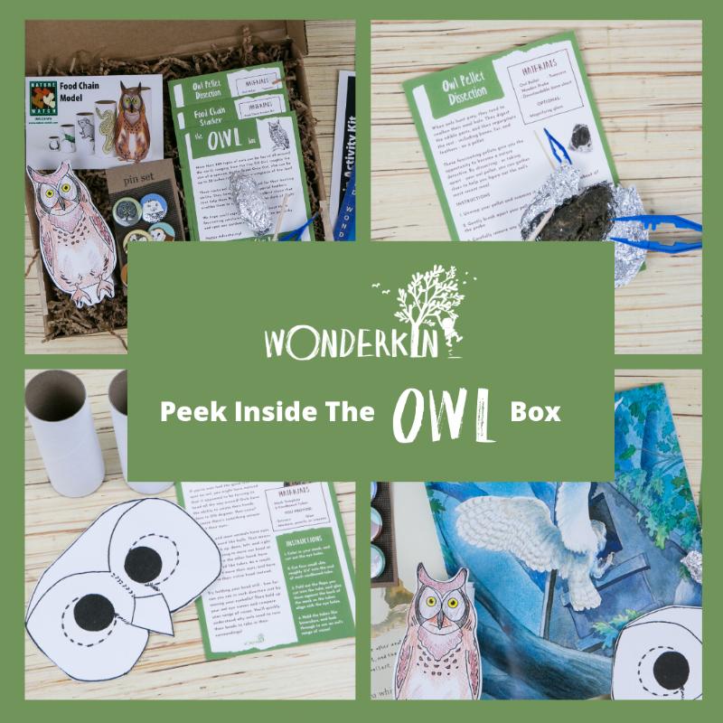 Peek inside the Wonderkin Owl Box!