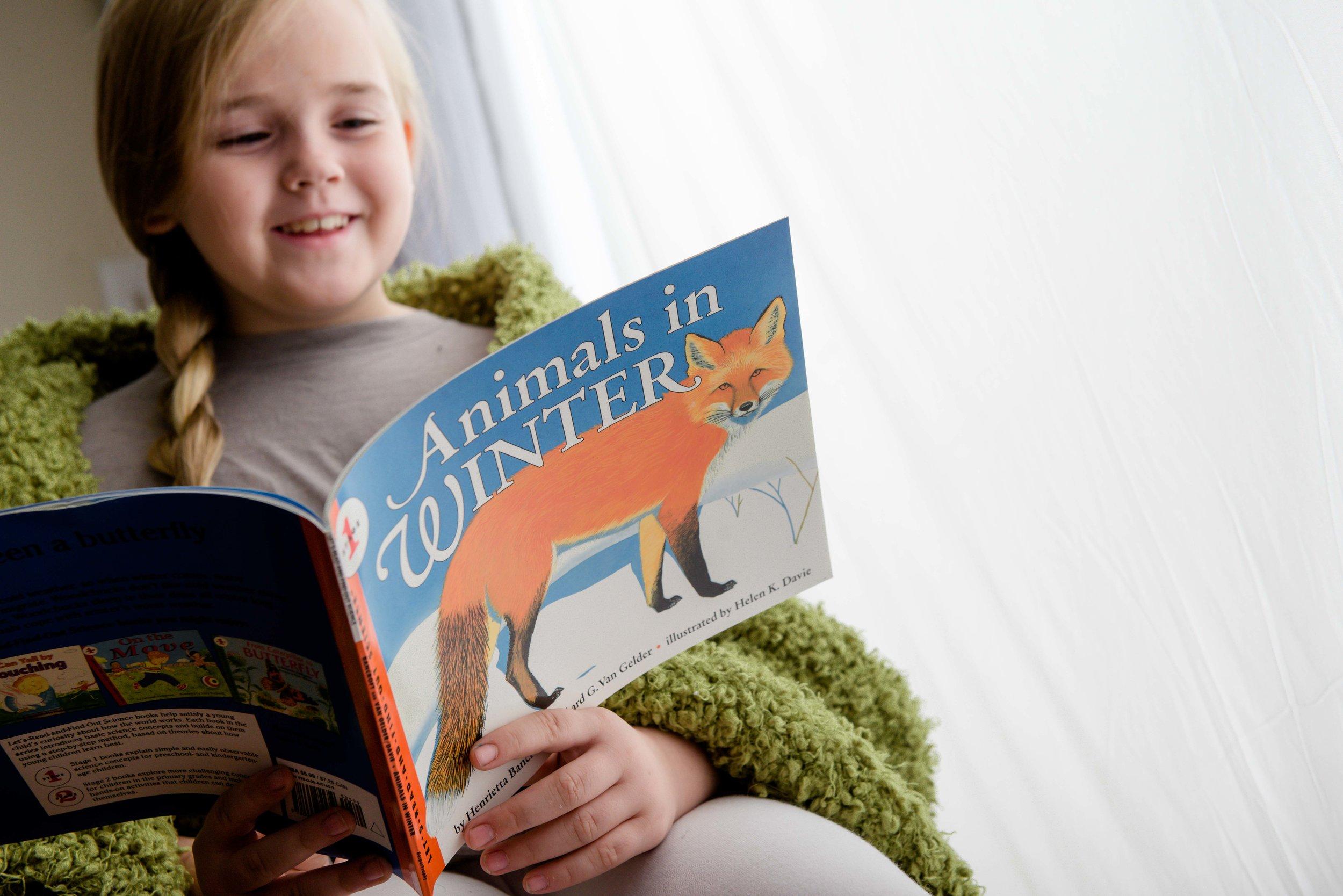 """""""Animals in Winter,"""" featured in the Wonderkin Winter Wildlife Box"""