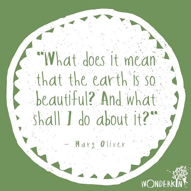 Thankful for this beautiful earth we get to call home, today and every day 🌎✨ . . . . . #inspirationalquotes #quotestoliveby #earthcare #naturequotes #quotes #wednesdayquotes #naturefix #natureplay #natureplayforall #goplayoutside #maryoliver #natureforall #naturestudy #wildschooling #wonderkinbox #wonderkin