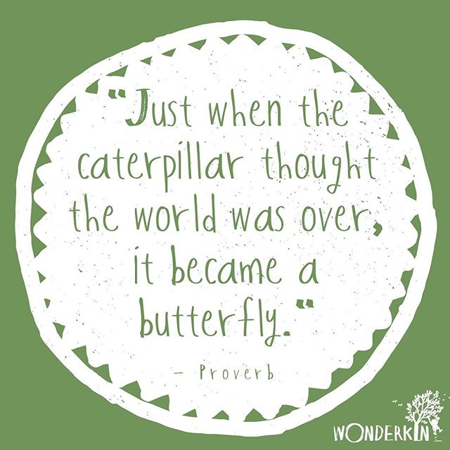 From tadpoles developing into frogs to caterpillars emerging as beautiful butterflies, spring is filled with inspiring transformations 🐛 🦋  Here's to shedding what no longer serves and leaning in to new beginnings! . . . . . #proverb #quotestoliveby #inspirationalquotes #quotes #naturequotes #naturefix #kidsinnature #outdoorkids #outdoorfamilies #fridayquotes #naturestudy #letnaturebeyourteacher #metamorphosis #wonderkinbox #wonderkin