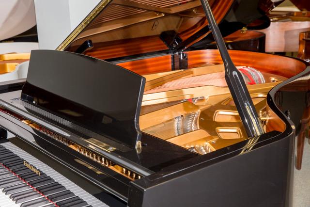 Hilton Piano Center