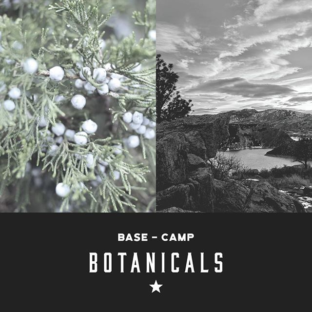 Every decision we make, from our 10 botanicals to our 18-hour soak, reflects our attention to detail and commitment to all things craft.