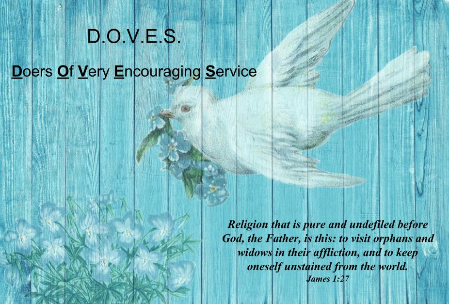 DOVE for church (2).jpg