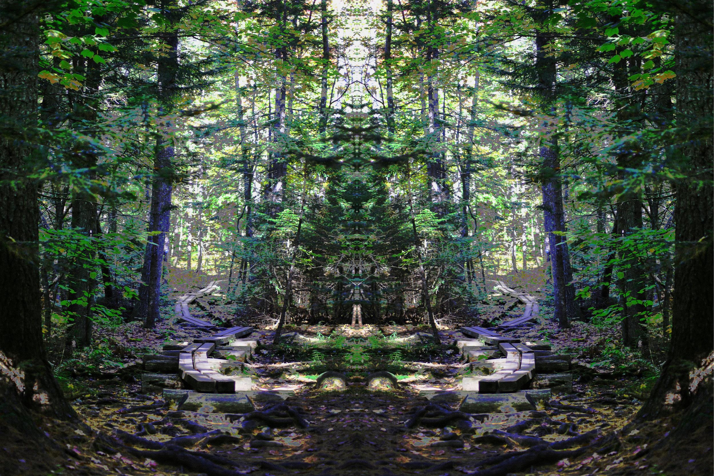 "Maine Trail Shrine  Deb Crerie  Photograph on Aluminum  60"" x 40"""