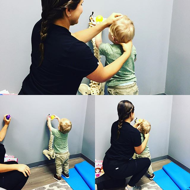 With the help of a spine display and toy balls, Dr. Ashley is able to get in a quick adjustment for our little patient✅ Do you have an active kid?  Call us 📞 @ 734-489-1607 #chiroforkids #kidadjustments #chirotoys #renewyouchiro #icpaforkids #brightonmi #pinckneymichigan #livingstoncounty #brightonchamberofcommerce