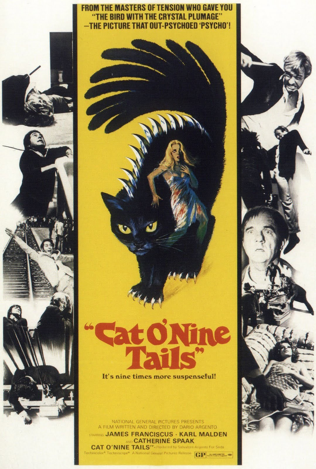 Cat o' Nine Tails (1971) - Directed by: Dario ArgentoStarring: James Francisus, Karl Malden, Catherine Speak, Horst Frank, Rada RassimovRated: NR (Suggested R for Some Violence and Terror)Running Time: 1 h 52 mTMM Score: 3.5 stars out of 5STRENGTHS: Direction, Writing, Subversion of Expectations, Characters, CinematographyWEAKNESSES: Dialogue, Pacing in First Act, Believability (?)