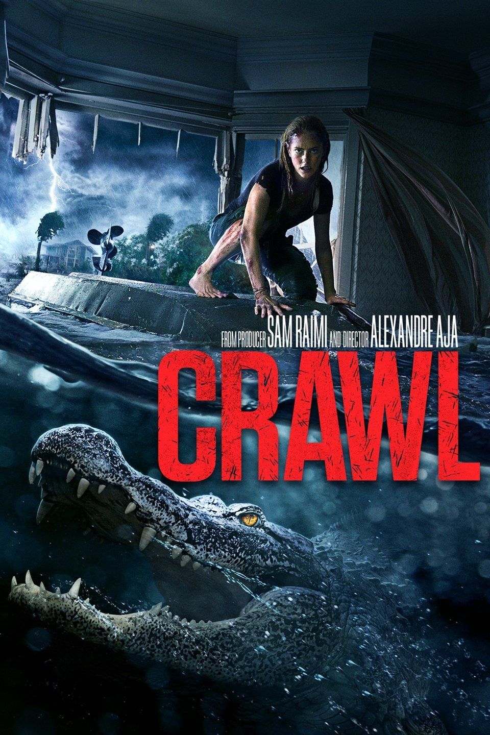 Crawl (2019) - Directed by: Alexandre AjaStarring: Kaya Scodelario, Barry Pepper, Ross AndersonRated: R for Bloody Creature Violence and Brief LanguageRunning Time: 1 h 27 mTMM Score: 3 stars out of 5STRENGTHS: Pacing, Special Effects, Production DesignWEAKNESSES: Thin Story, Some Writing