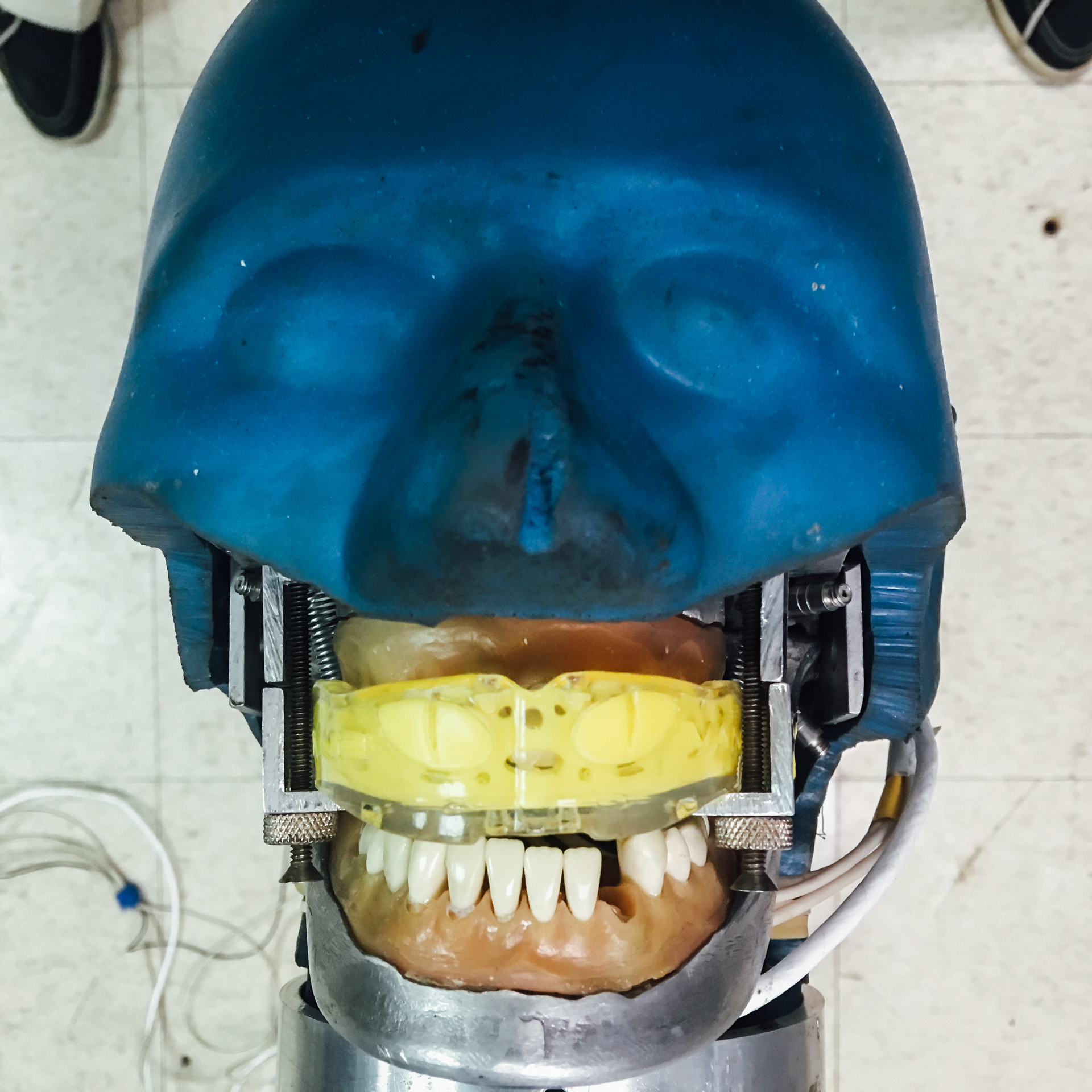 Figure 2b: Modified headform wearing mouthguard that is secured by clamps