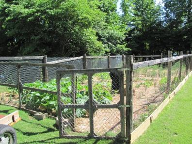 garden2013blog