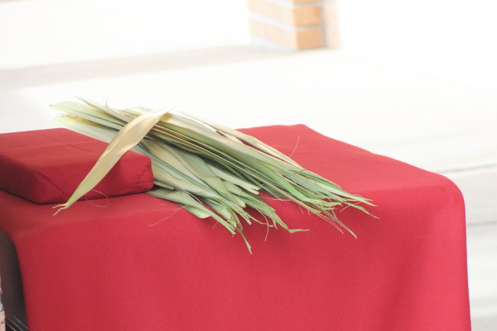 Palm Sunday -