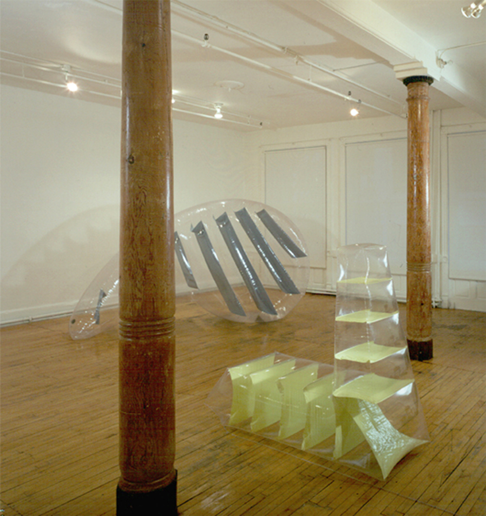 Another Page & Shadow of Possibility   2001 installation Kagan Martos NY