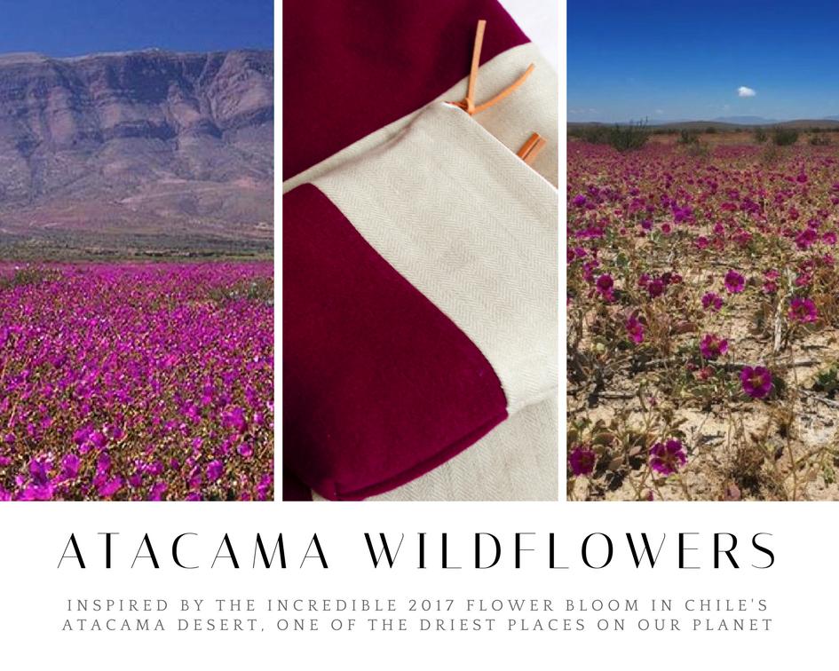 Atacama Wildflowers.png