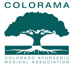 Alyssa was a recent speaker at COLORAMA Conference in Denver and spoke on how Ayurveda can improve both birth and postnatal outcomes.