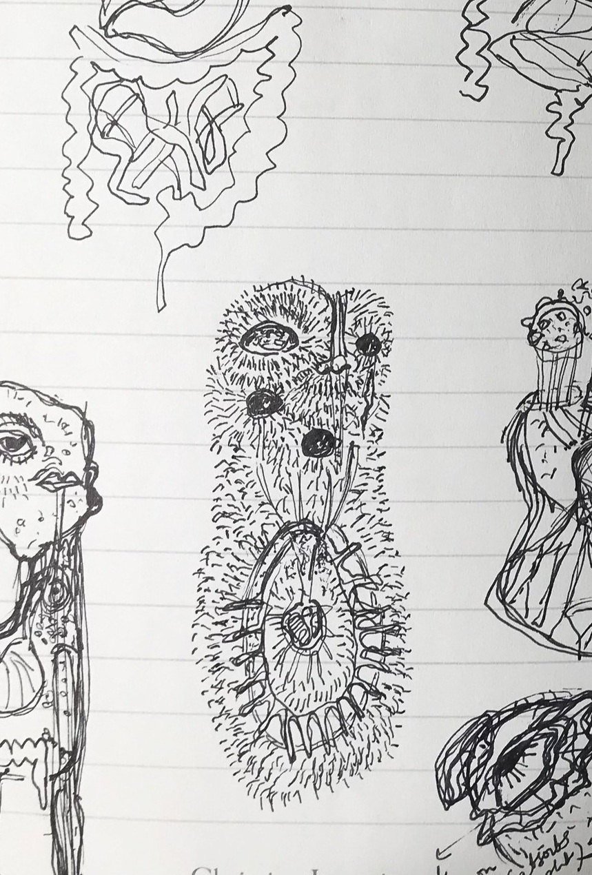 Sketches to look at alternate ways of digestion